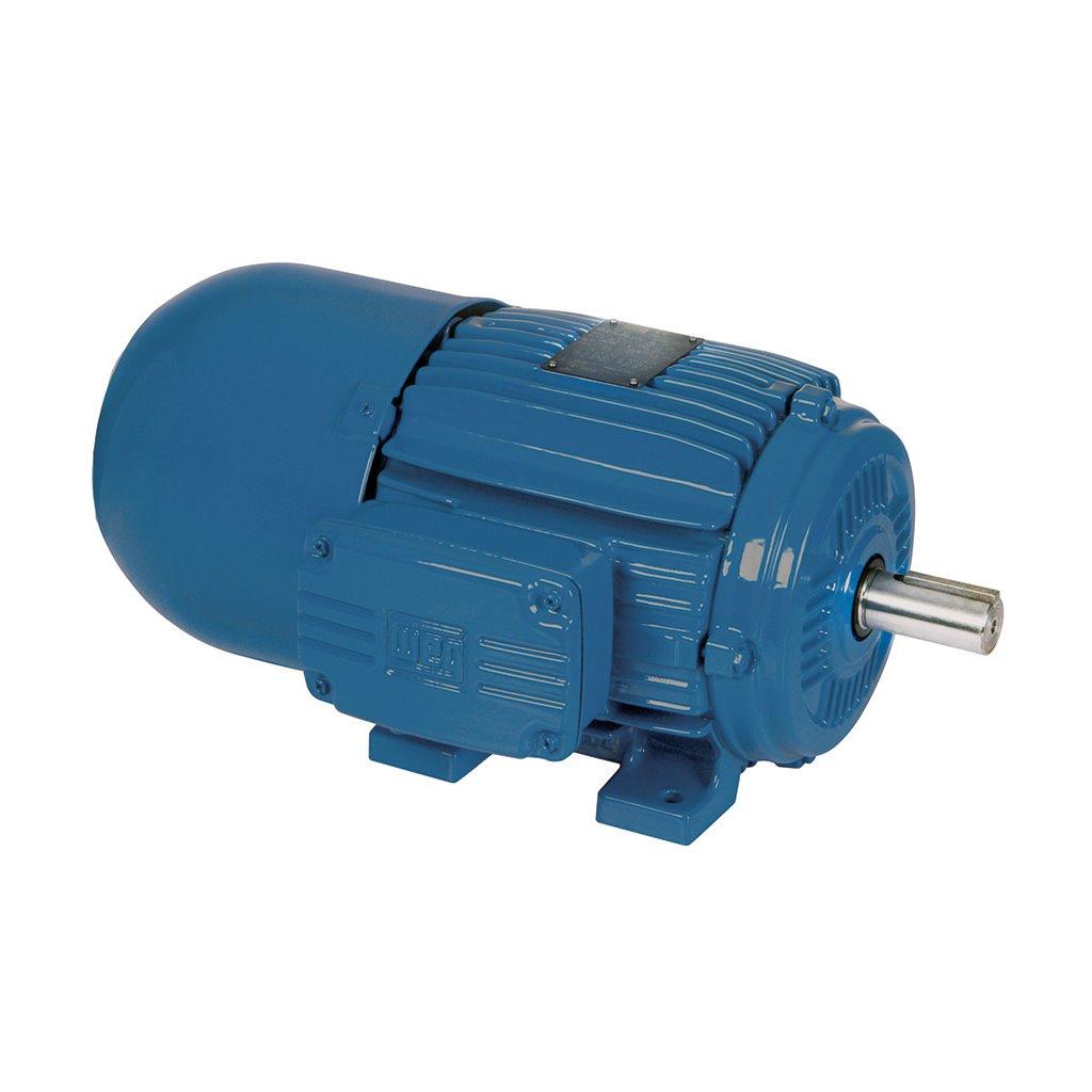00118et3e143tc S Weg Motor Tsi Solutions