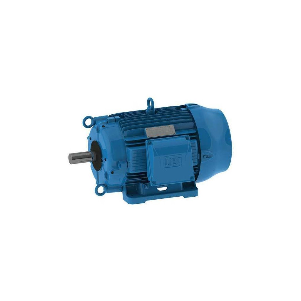 00318at3ect182t W22 Weg Motor Tsi Solutions