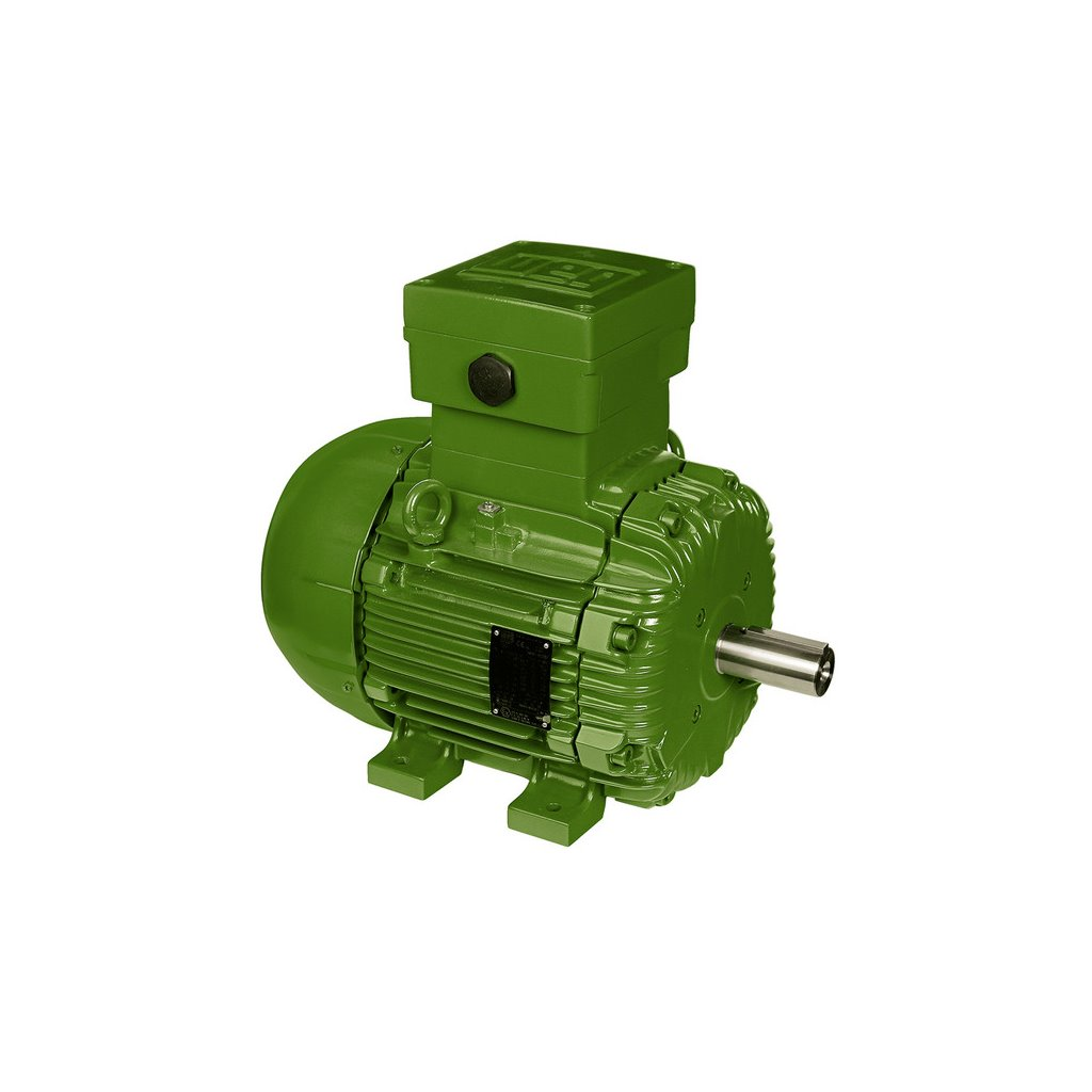 E01112xp3yax160lf3 Weg Motor Tsi Solutions