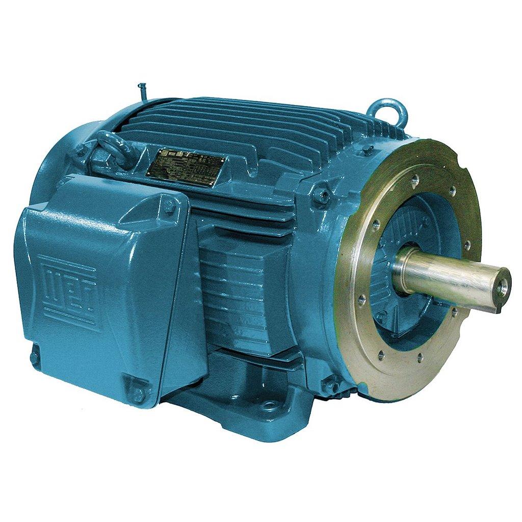 01018et3e215t w22 weg motor tsi solutions for 10hp 3 phase motor