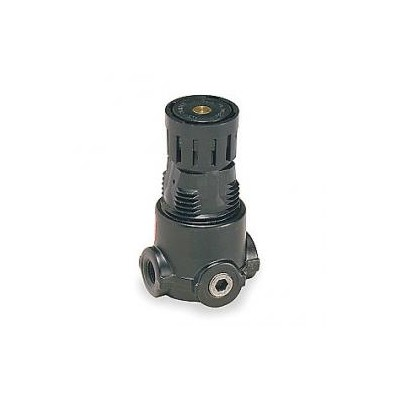 Wilkerson Regulator - 1/4 NPT